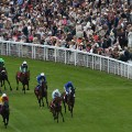 Goodwood horse racing exchange stakes crowd