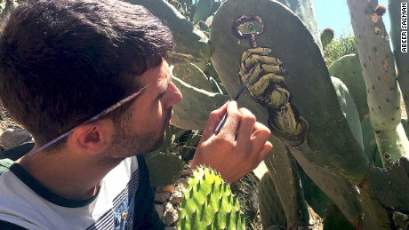Cactus is Palestinian painter's canvas and 'symbol of resistance'