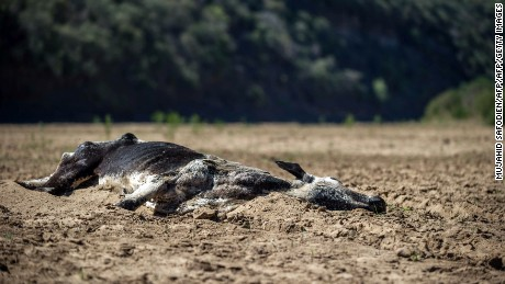 The drought in South Africa is the worst on record.
