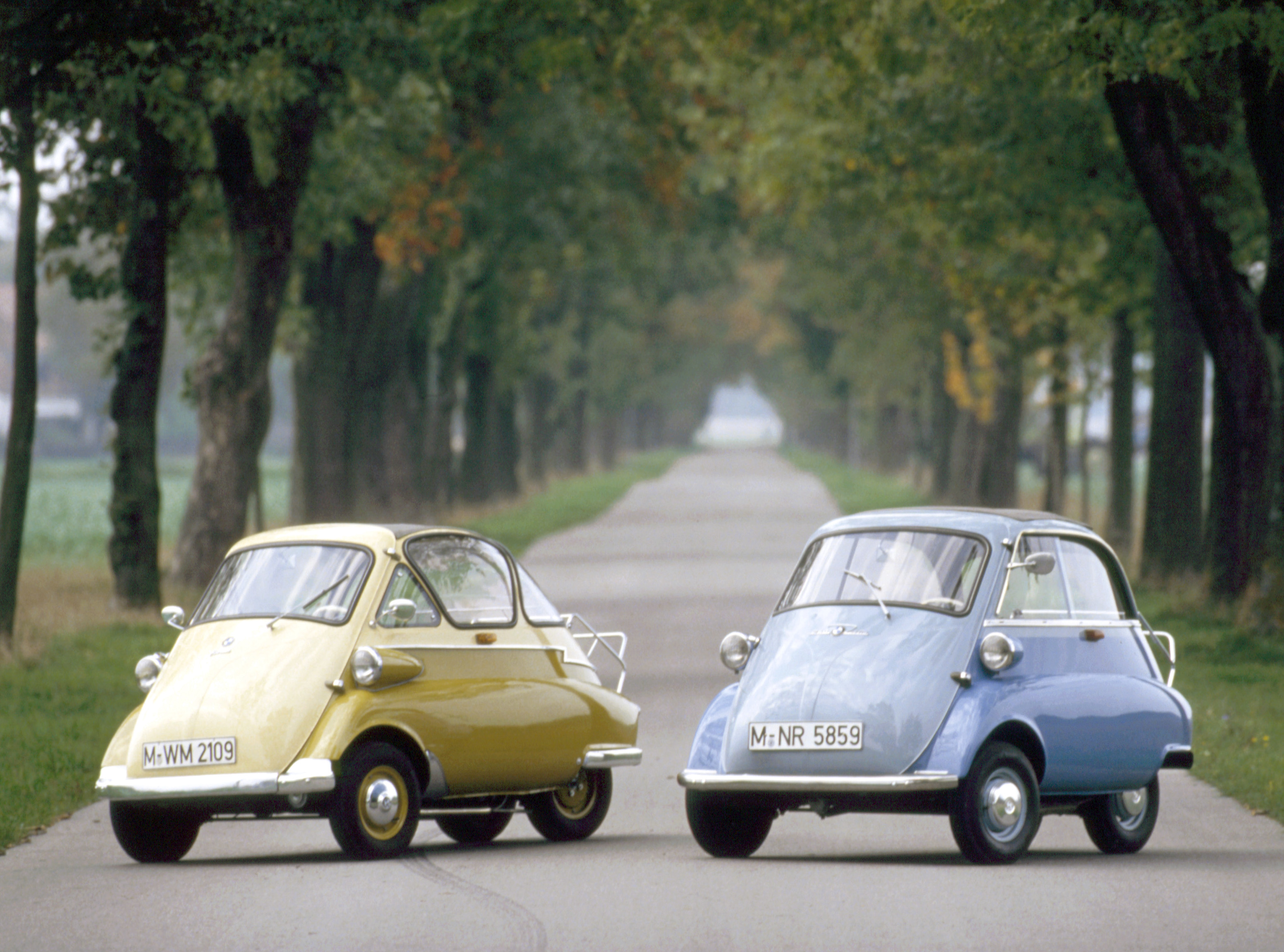 What is the smallest car in the world called
