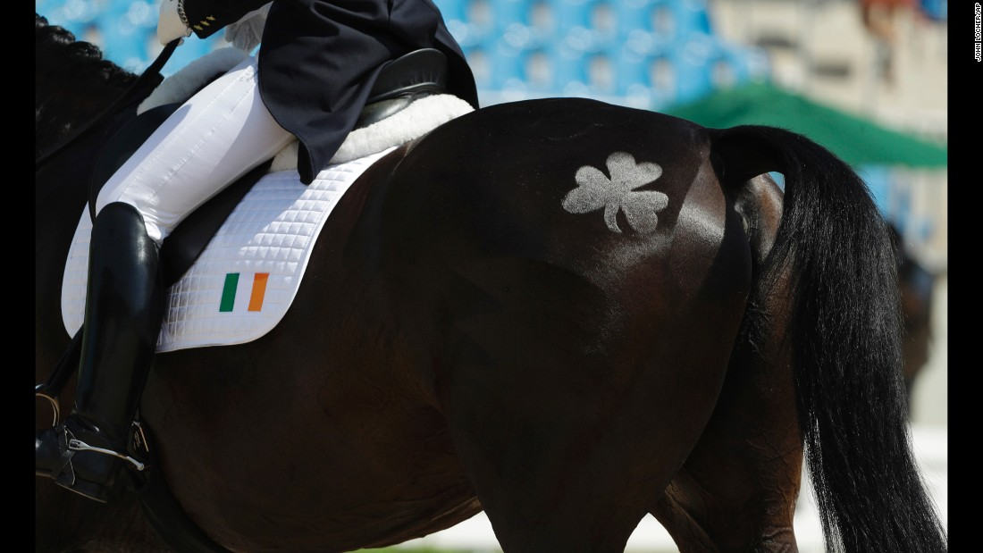 A shamrock is shaved into the hair of Vancouver K, ridden by Ireland's Judy Reynolds, as they compete in the individual dressage competition.