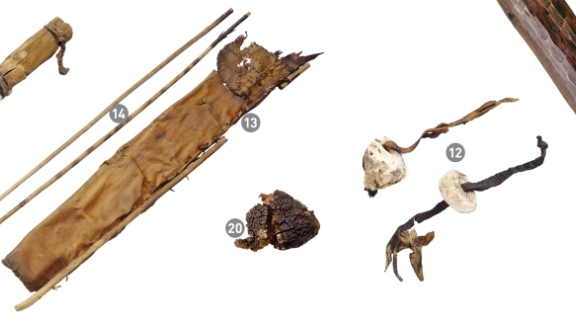 An assemblage of equipment associated with the Iceman. From left: stone dagger, bows, leather quiver, tinder fungus, birch fungus and birch bark.