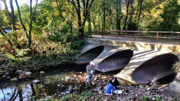Researchers sample water, as well as algae and bacteria, at Gwynns Run in Baltimore.