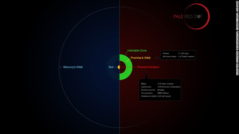 Proxima b closest rocky planet to our solar system found cnn this infographic compares the orbit of the planet around proxima centauri proxima b with ccuart Choice Image