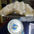 world largest pearl philippines