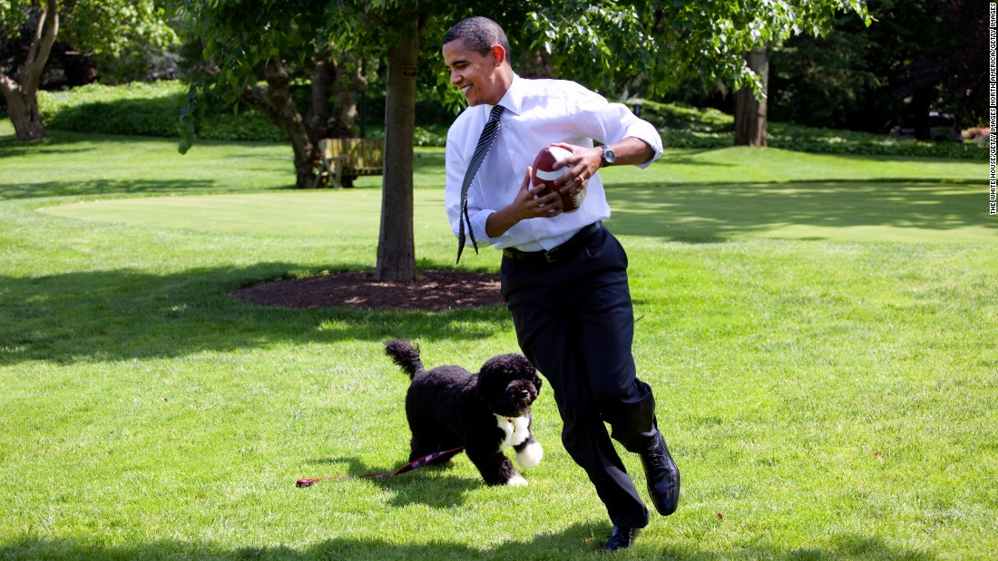 Obama plays football with Bo on the South Lawn on May 12, 2009.