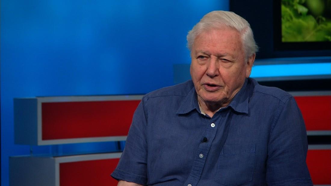 David Attenborough reflects on his incredible life - CNN Video