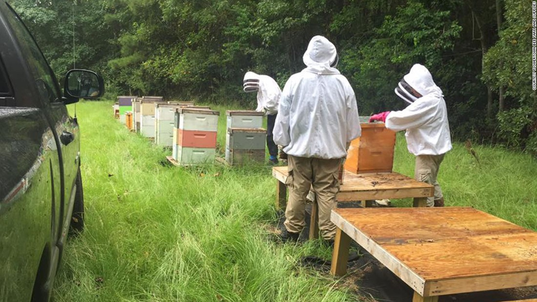 More than 46 hives were killed by the spray, ruining her entire business, said Stanley.