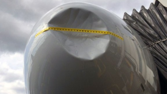 American Airlines Flight 2310 landed safely in Seattle last April after a serious bird strike.