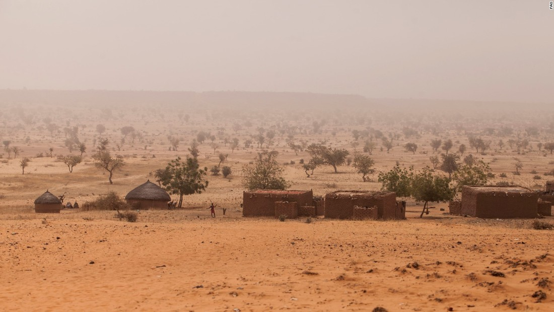 The Wall was conceived in response to the growing crisis of desertification in the Sahel region on the southern side of the Sahara desert, which causes drought, famine and poverty.