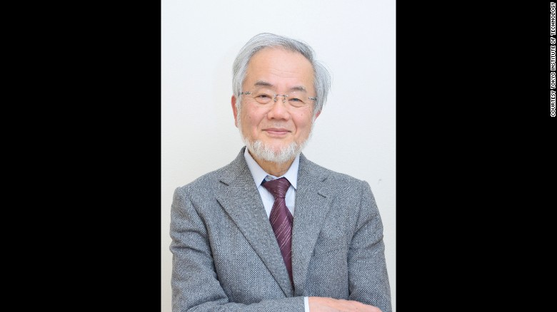 Biologist Yoshinori Ohusumi Was Awarded The Nobel Prize For His Discoveries In Autophagy Process