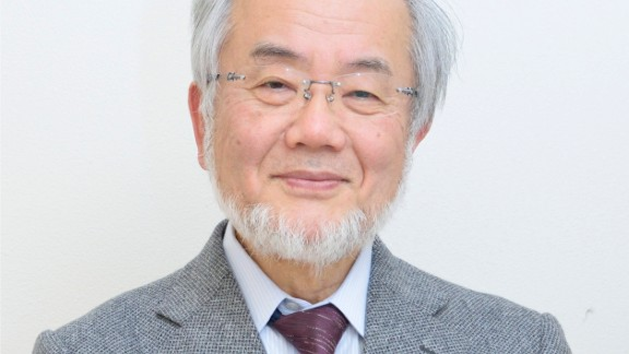 """Biologist Yoshinori Ohusumi was awarded the Nobel Prize for his discoveries in autophagy, the process where a cell recycles part of its own contents.<br /><br />Click through the gallery to learn about other notable <a href=""""https://www.nobelprize.org/nobel_prizes/medicine/laureates/"""" target=""""_blank"""" target=""""_blank"""">Nobel Prize winners</a> in medicine and physiology."""