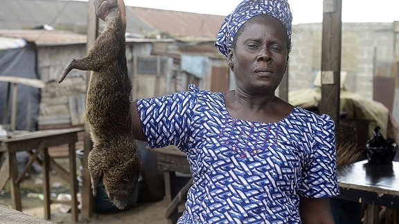 Infected bushmeat could be the source of animal-human Ebola transmission. Pictured, a bushmeat seller at the Ajegunle-Ikorodu market in Lagos, August 2014.
