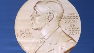Why it's so hard to guess who's going to get a Nobel Prize