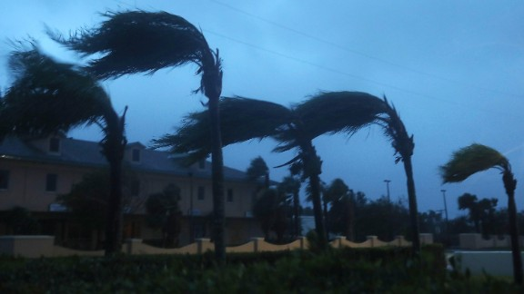 Palm trees on Cocoa Beach sway in the wind on October 7.