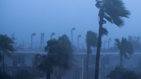 ORMOND BEACH, FL - OCTOBER 7: Palm trees blow in the rain and wind from Hurricane Matthew, October 7, 2016 in Ormond Beach, Florida. Overnight, Hurricane Matthew was downgraded to a category 3 storm. (Photo by Drew Angerer/Getty Images)