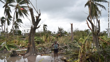 A woman stands in a field of destroyed trees on Thursday.