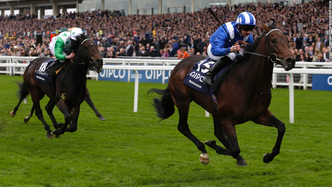 Muhaarar, ridden by Paul Hanagan, roars clear to win the 2015 British Champions Sprint Stakes at Ascot Racecourse.