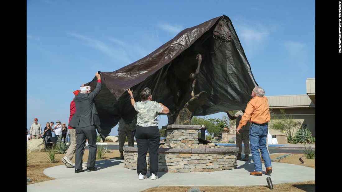 U.S. Marine Corps veterans help unveil a monument of Staff Sgt. Reckless at Camp Pendleton, California, on Wednesday, October 26. Reckless, a decorated war horse, was known for her heroics during the Korean War.