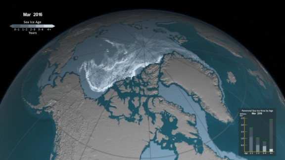 This NASA animation shows the rapid decline in the Arctic's perennial sea ice from 1984-2016