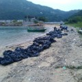 Hong Kong ocean pollution going green