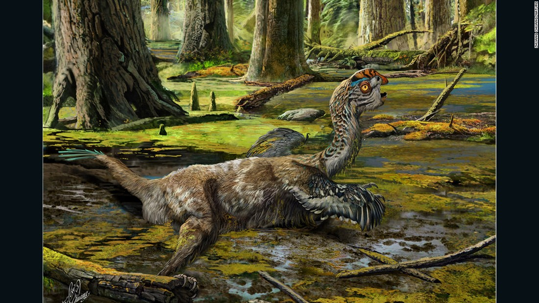 "An artist's impression of the feathered Tongtianlong limosus or 'mud dragon' dinosaur.<a href=""http://cnn.com/2016/11/11/world/dinosaur-china-dynamite-construction-workers/"">  A paper on its discovery</a> was published in Nature Scientific Reports on November 10, 2016."