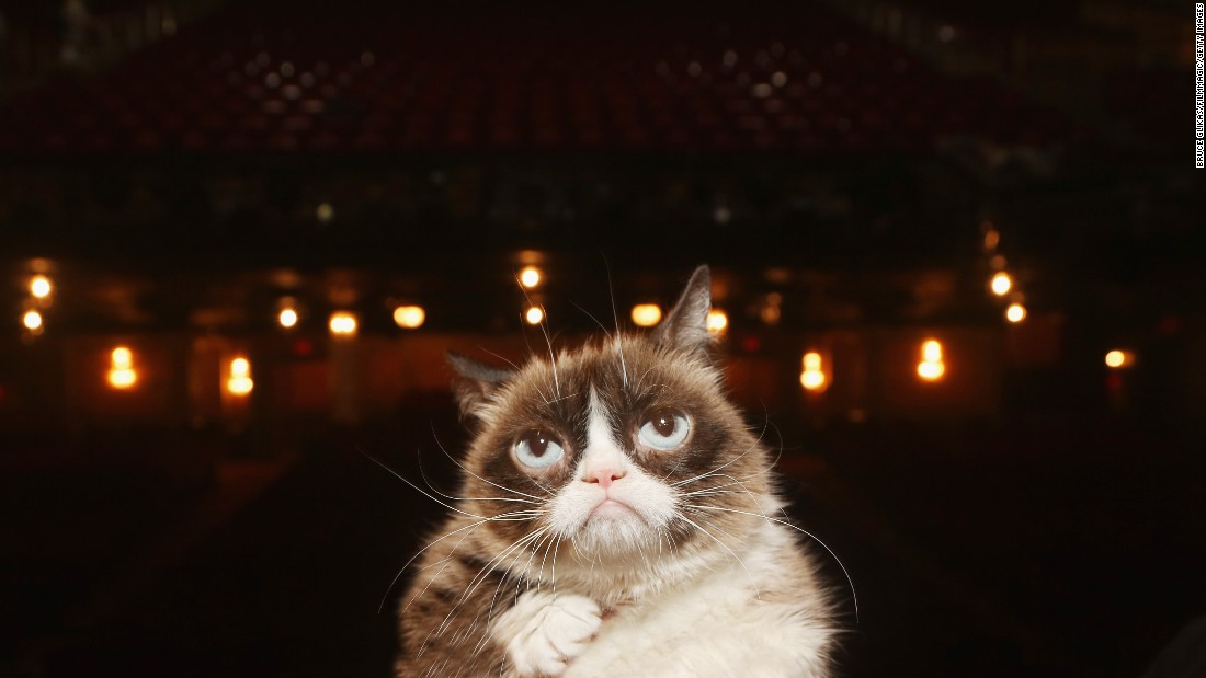"The <a href=""http://money.cnn.com/2015/04/14/technology/social/grumpy-cat-celebrity-money/"" target=""_blank"">viral sensation</a> known as Grumpy Cat makes her Broadway debut, appearing in ""Cats"" on Friday, September 30."