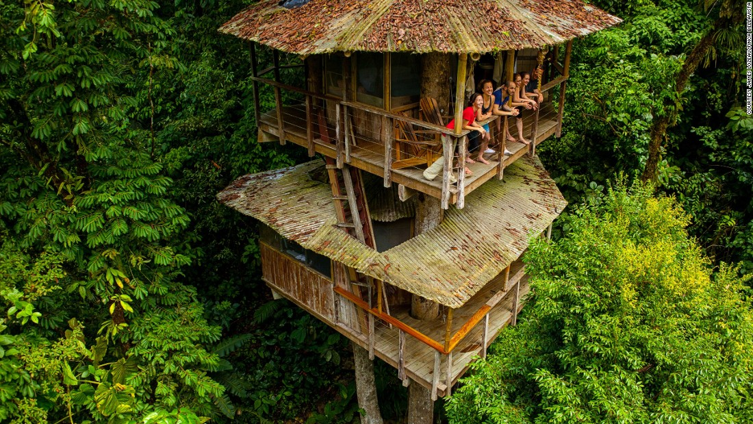 is the treehouse the pinnacle of sustainable living cnn style - Treehouse