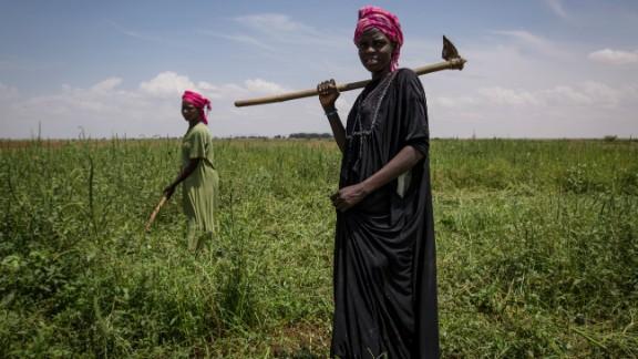 Migrant workers weeding a farm in Wadi El Ku Catchment Area, Shagra, North Darfur.