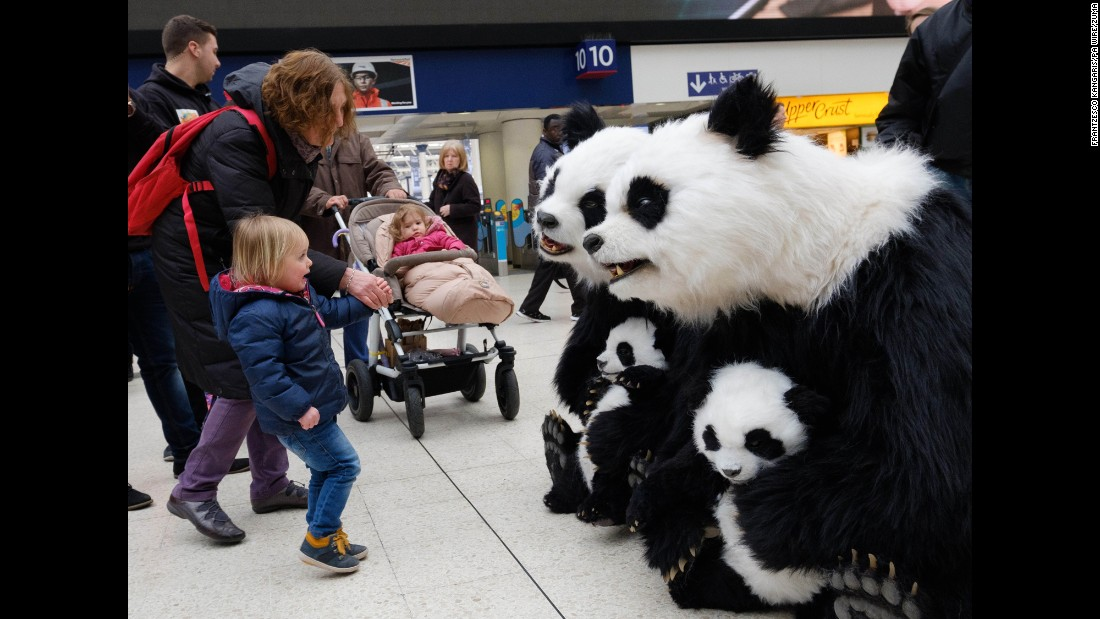 <strong>March 15:</strong> A girl meets an animatronic panda bear in London.