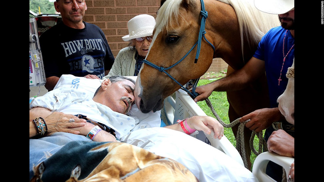 "<strong>May 21:</strong> A horse nuzzles Vietnam veteran Roberto Gonzales outside a VA hospital in San Antonio. Gonzales, a disabled horse trainer, <a href=""http://www.cnn.com/2016/05/23/health/dying-veteran-reunited-with-horses-trnd/"" target=""_blank"">wanted to spend some of his precious final moments with two of his beloved friends:</a> his horses, Ringo and Sugar. He died two days later."