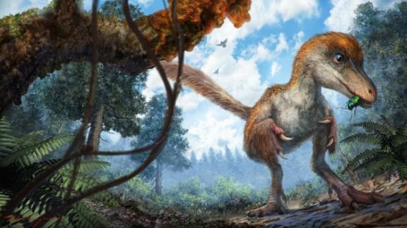 A small coelurosaur on the forest floor.