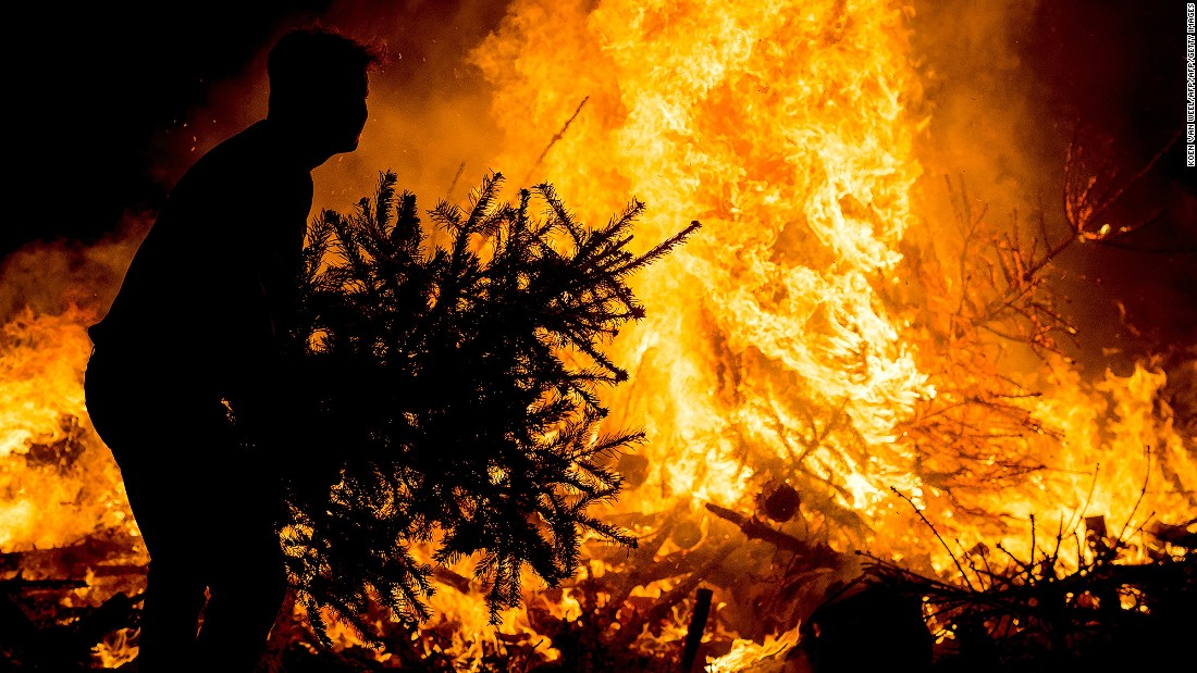 Burning a Christmas tree, as this man is doing in Amsterdam, Netherlands attracts a relatively small carbon footprint -- an incinerated two-meter tree will produce around 3.5 kg CO2e, according to the UK's Carbon Trust.