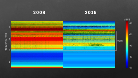 A year of audio is compressed into  spectrograms. Red indicates more sound coming from the forest. Blue is much quieter.