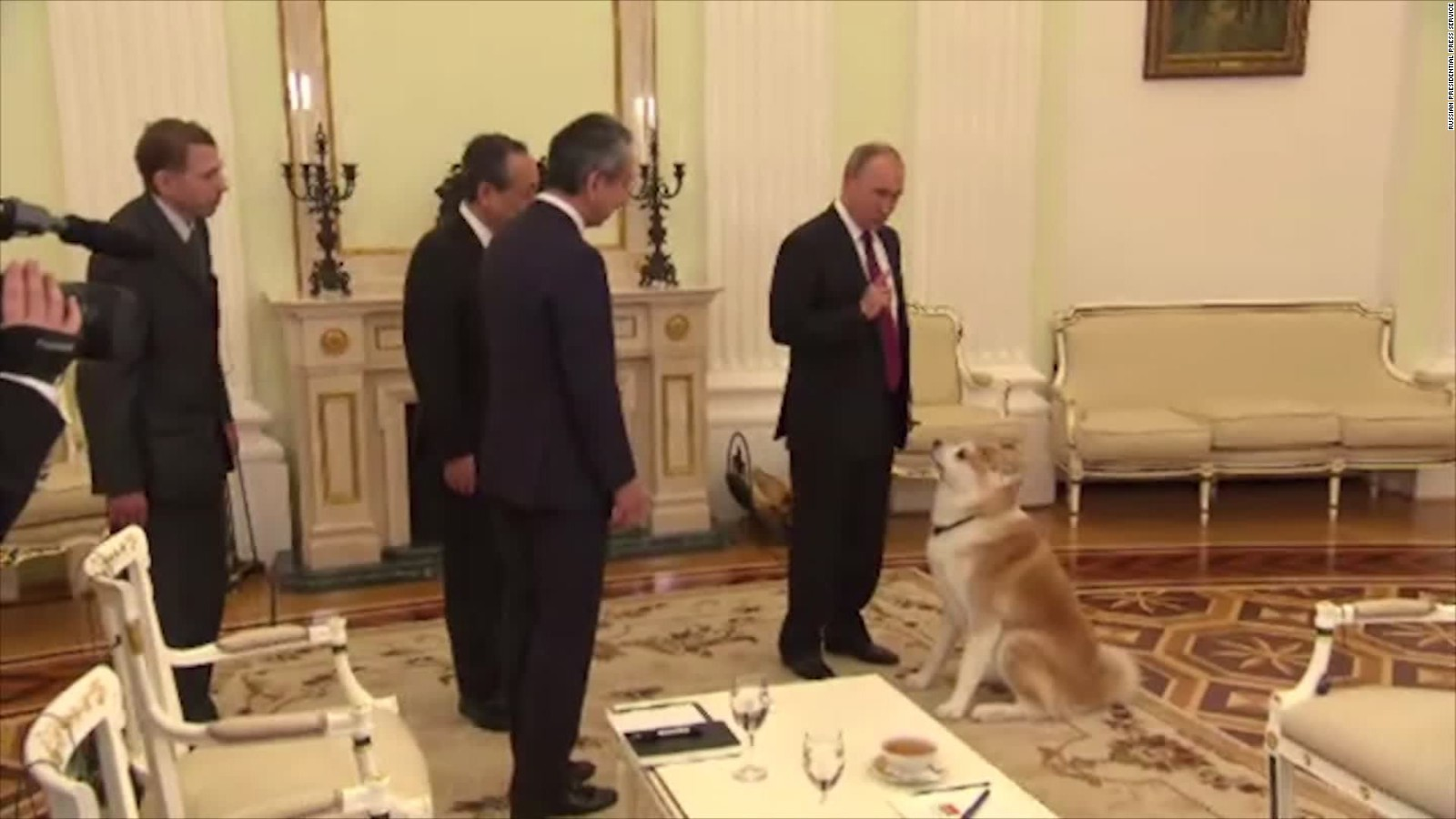 Putin S Large Dog Yume Barks At Japanese Journalists Cnn