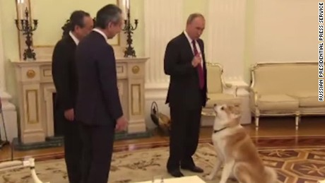 Putin's dog puts journalists in their place