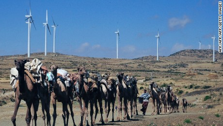 Camels walk along the road near turbines at Ashegoda wind farm in Ethiopia's northern Tigray region.
