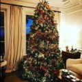 rob lowe christmas tree