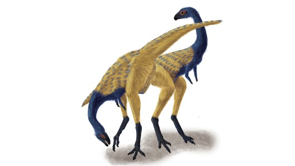 An artist impression of the Limusaurus. The Ostrich-sized dinosaur was found in Xinjiang in China