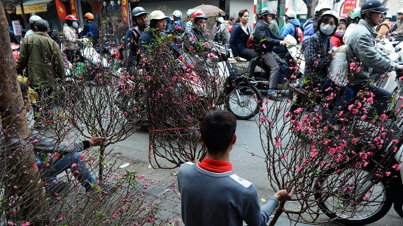 Hanoi, Vietnam -- Tet flower market: Known as Tet in Vietnam, Lunar New Year is the most important holiday in the country. Dodging motorcyclists while visiting a local flower market is part of the fun of celebrating the festival in Hanoi.