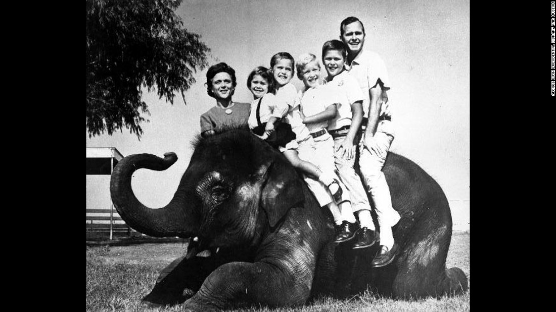 The Bush family poses on an elephant during the 1964 Senate campaign. Between Bush and her husband, from left, are children Dorothy, Marvin, Neil and Jeb. Her son George was away at school.