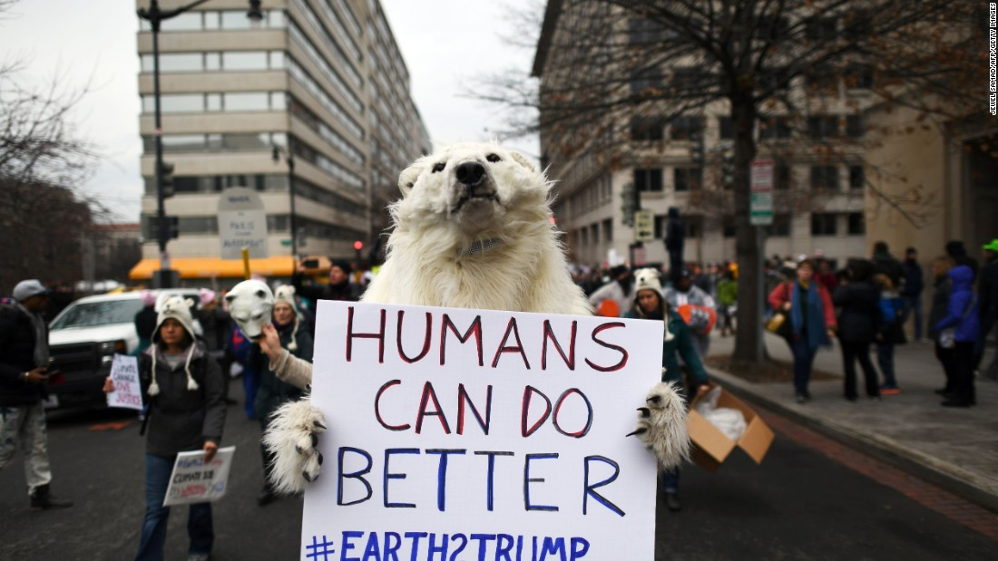 A person clad as a polar bear carries a sign during the protests in Washington.