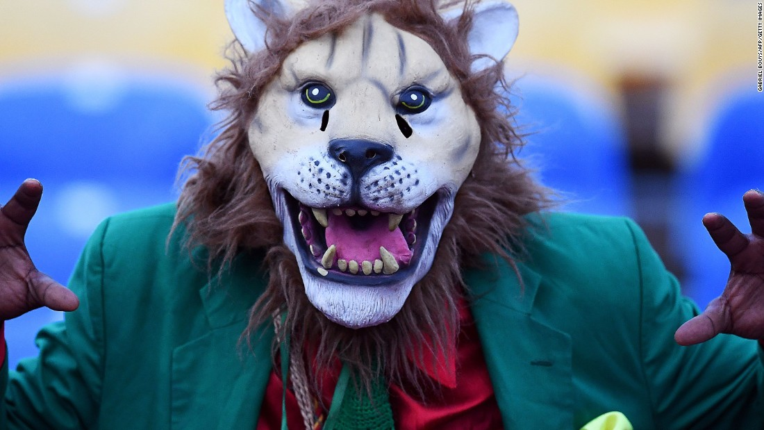 A supporter of the Cameroon Indomitable Lions dresses for the part for the match against host Gabon.