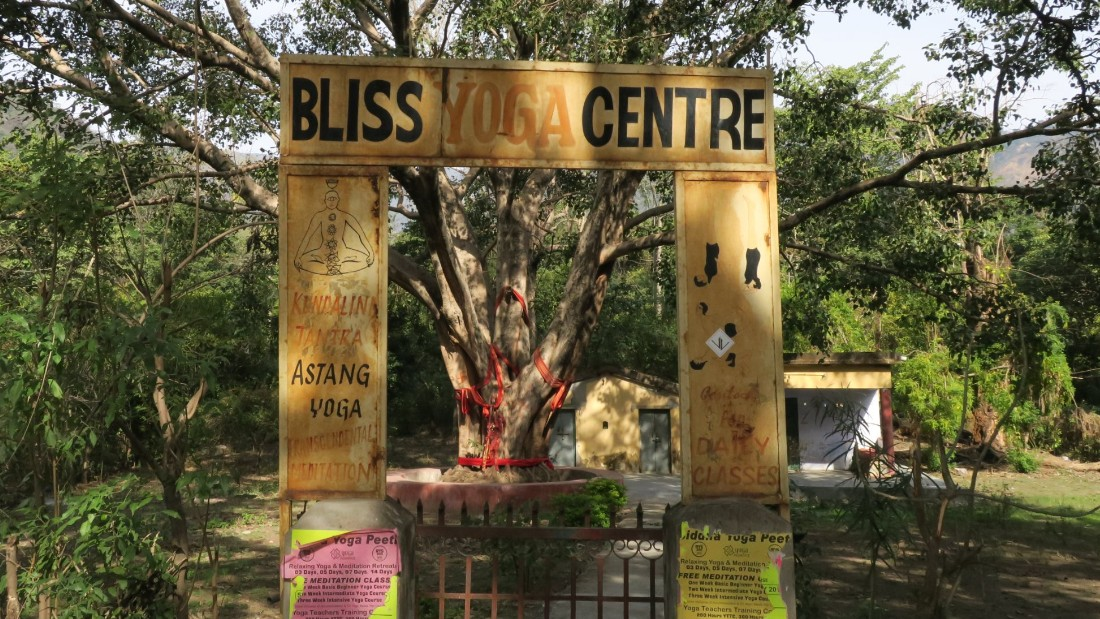 <strong>Yoga: </strong>Rishikesh boasts one of the largest clusters of yoga centers in the world. This yoga school features a giant tree wrapped in red rope to signify its holy status.