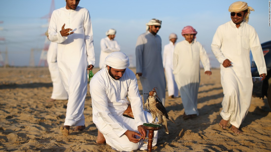 Falconry today has become more of a national sport and a rite of passage for many young Emirati men, who take their time to train their Falcons.