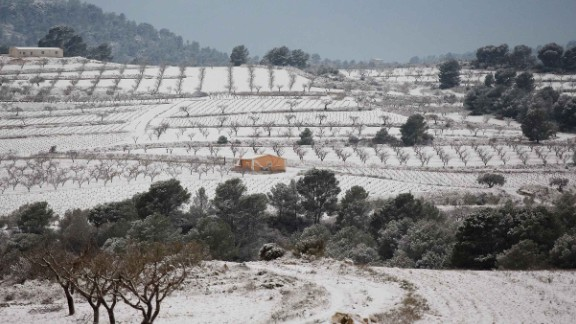 Spain's Murcia province has seen heavy snowfall for the first time in decades. Many crops have been ruined.