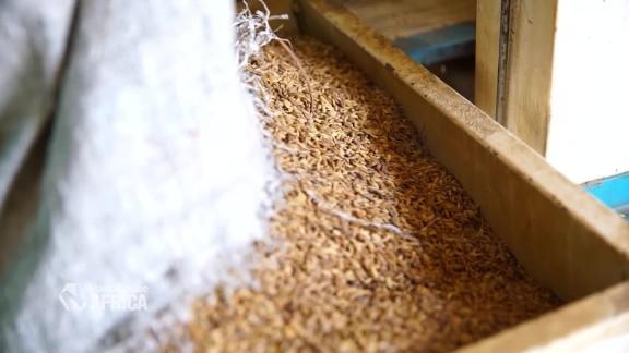 Marketplace Africa - Liberia Rice - A_00014410.jpg