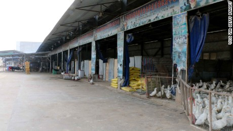 Chinese poultry markets closed to stop spread of avian flu