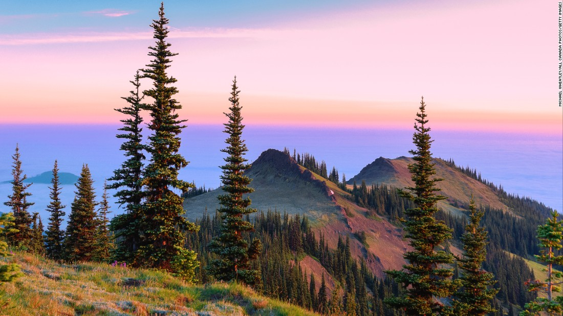 <strong>7. Olympic National Park, Washington:</strong> Olympic has everything an outdoors lover could ask for: over 70 miles of untamed coastline, old-growth temperate rain forests, glacier-capped mountains and this incredible view from a ridge at Deer Park.