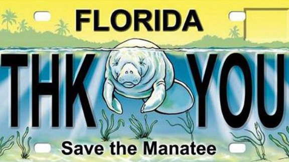 """A sample of the """"Save the Manatee"""" plate, used to raise money for manatee protection."""